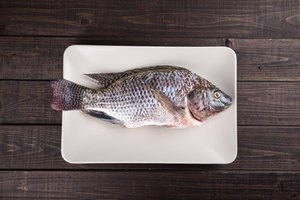 How to Deep-Fry Tilapia