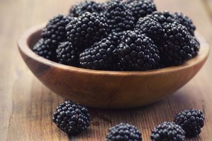 Disadvantages of Blackberries