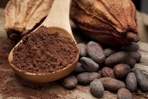 Raw Cacao Nutrition Information