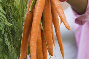 What Are Dangers of Juicing Carrots?