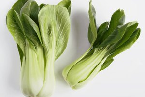 What Vegetables Can You Eat on the Atkins Diet?