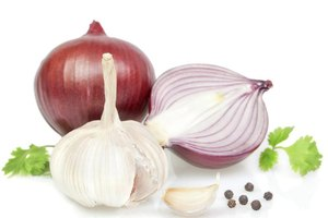 Antidote for Onion and Garlic Allergies