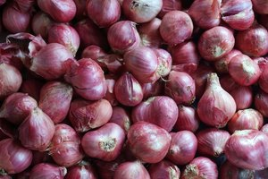 Are Onions Bad for Gastritis?