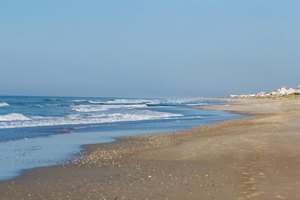 The Best North Carolina Beaches for Shells