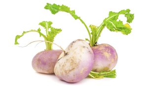 The Nutritional Value of Cooked Turnips