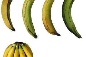 How to Bake a Plantain or a Banana