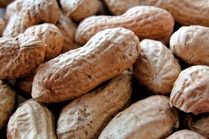 Can I Eat Peanut Butter on a Raw Food Diet?