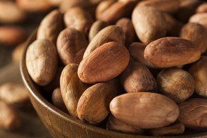Does Raw Cacao Cause Permanent Damage to the Liver?