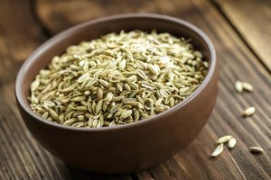 Can Eating Too Much Fennel Seed Be Harmful?