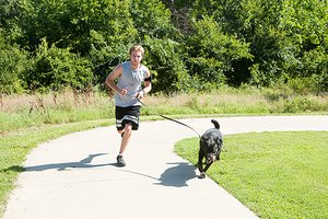 How Fido Can Join You at the Gym and a Surprising Way t…