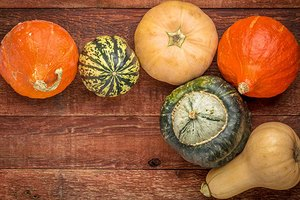 Top 5 Winter Squashes and How to Pick the Best Ones