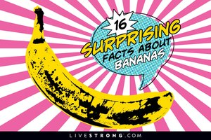 16  Surprising Facts About Bananas