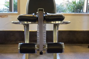 What Muscles Does the Leg Curl/Extension Machine Work?