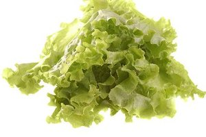 Nutrients Found in Green Leaf Lettuce