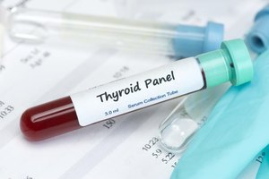 How Can L-Arginine & L-Tyrosine Help With My Thyroid?