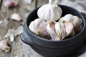 Garlic And Tuberculosis