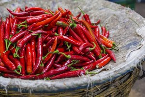 Capsaicin for Neuropathy