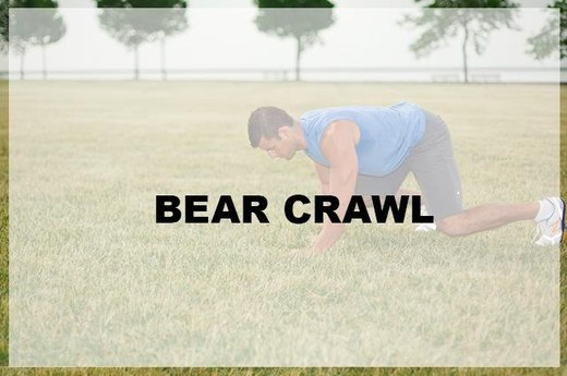 12. Bear Crawl