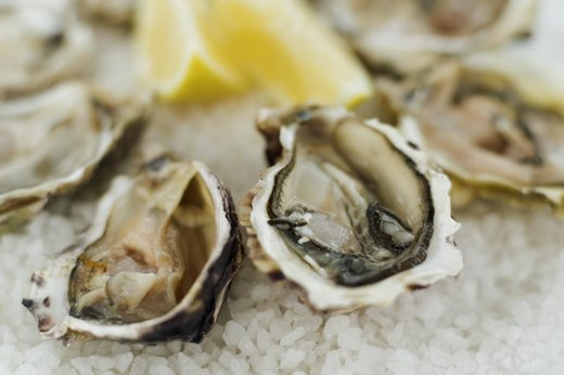 8. Oysters