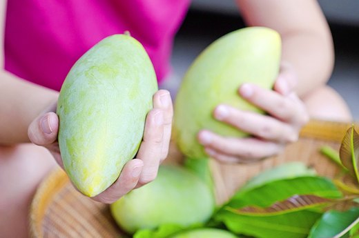 7. A Squeeze Test Tells If a Mango Is Ripe, Not Its Color