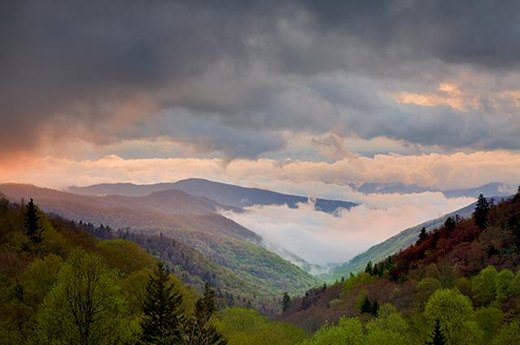 15. Best Park to Smell the Flowers: Great Smoky Mountains National Park, North Carolina