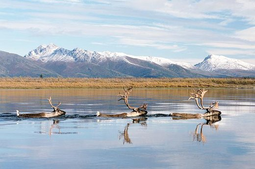 Kobuk Valley National Park, Alaska
