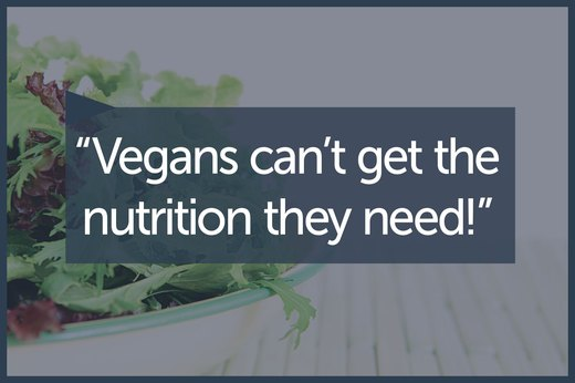 MYTH 3: A Vegan Diet Doesn't Meet Nutritional Needs
