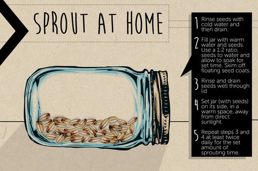 DIY Sprouts at Home