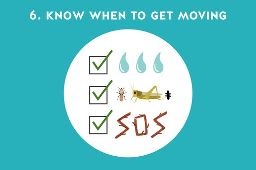 6. Know When to Get Moving
