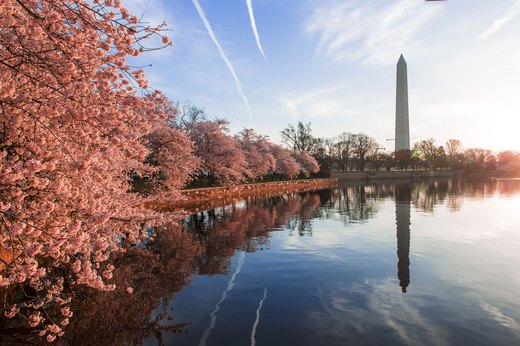 2. Washington, D.C.