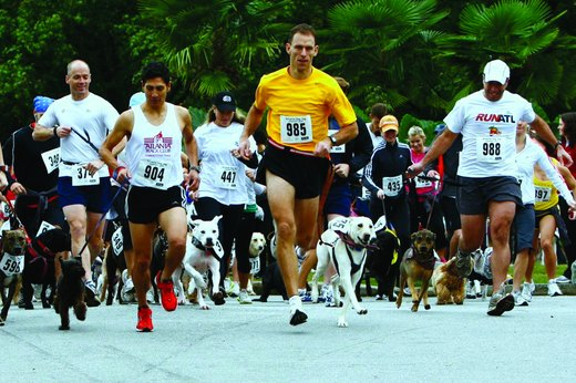 6. Atlanta Dog Jog (May)