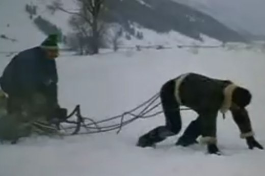 3. Pulling a Sled