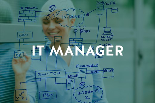 6. IT Manager
