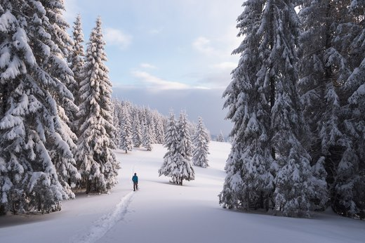 10 Hikes That Will Make You Fall in Love With Winter