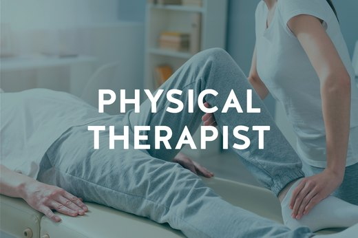 7. Physical Therapist