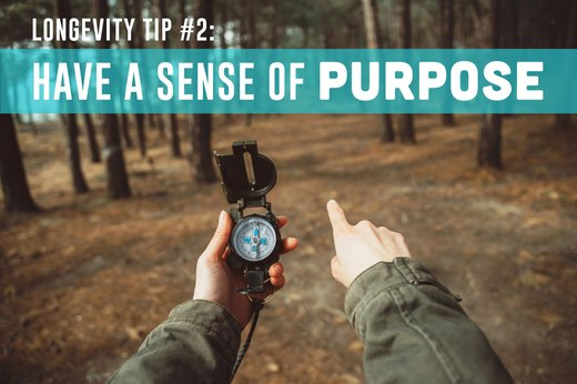 2. Have a Sense of Purpose