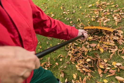 6. Rake the Leaves