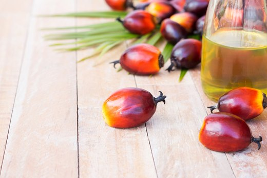 12. Palm and Palm Kernel Oil