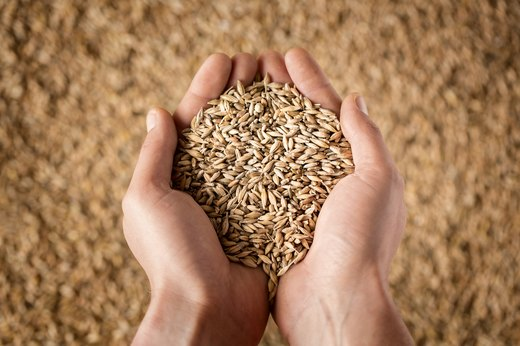 9. Grains cause inflammation.