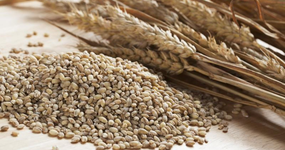 Is Pearl Barley More Nutritious Than Rice Livestrong Com