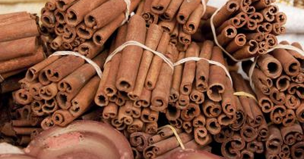 The Difference Between Saigon Cinnamon & Regular Cinnamon
