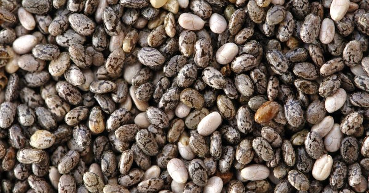 White or black chia seeds