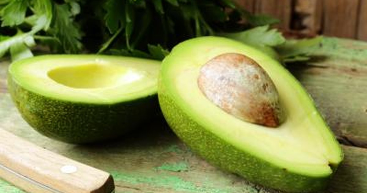 Avocado Fat Grams 43