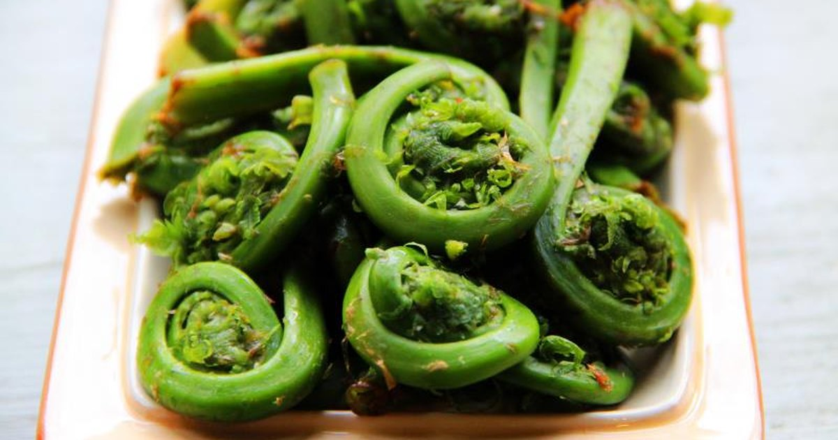 fiddleheads cooking studio