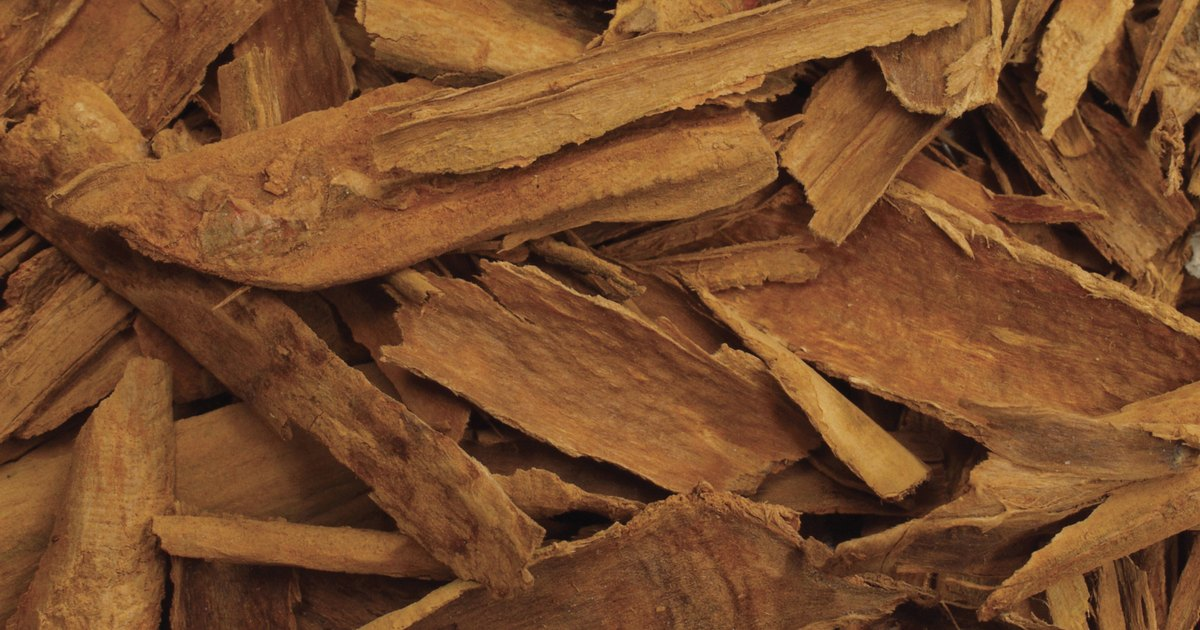 The Health Benefits of Ceylon vs. Cassia Cinnamon ...