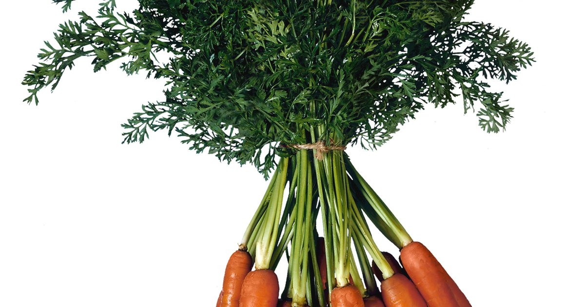 Effects of a Combination of Beta Carotene and Vitamin A on ...