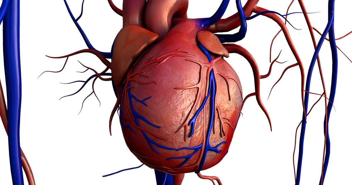 Blood Vessels That Carry Blood Away From The Heart
