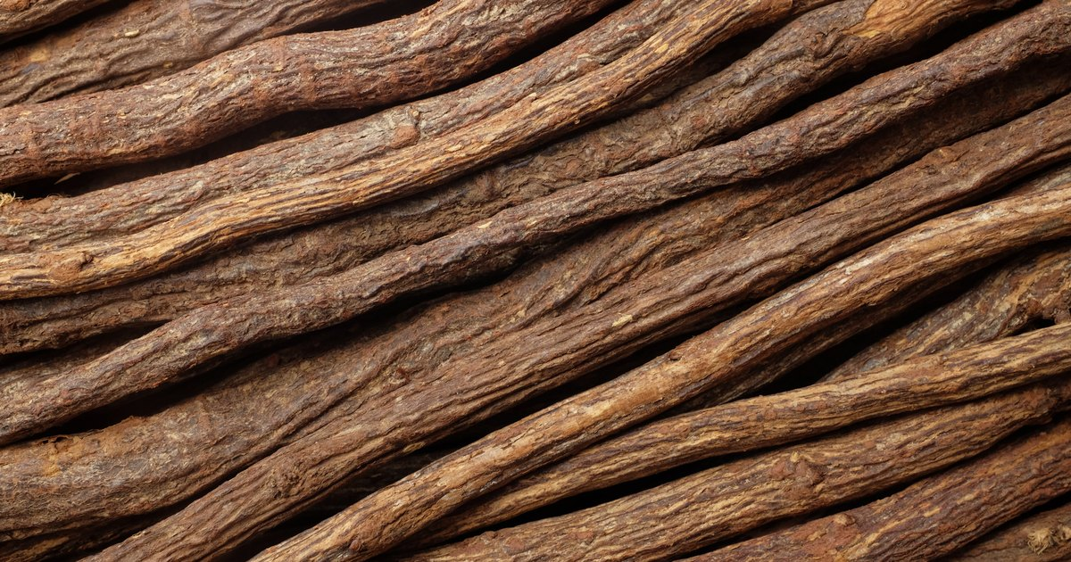 What Are the Benefits of Licorice Root Powder ...