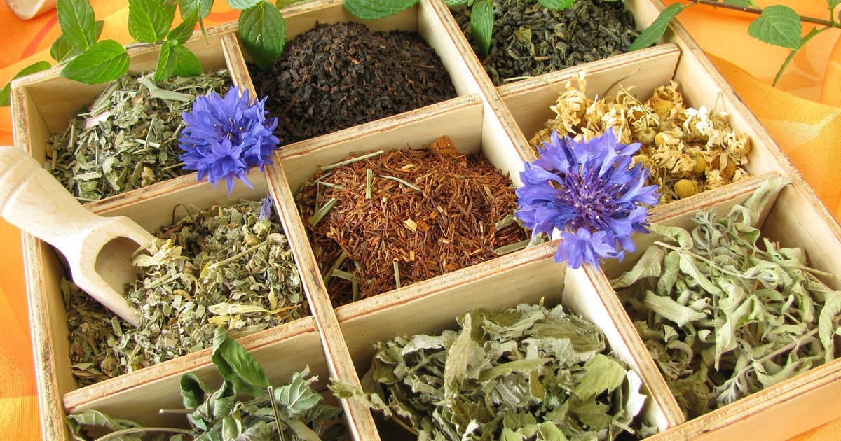 Teas that Help Burn Fat & Boost Metabolism