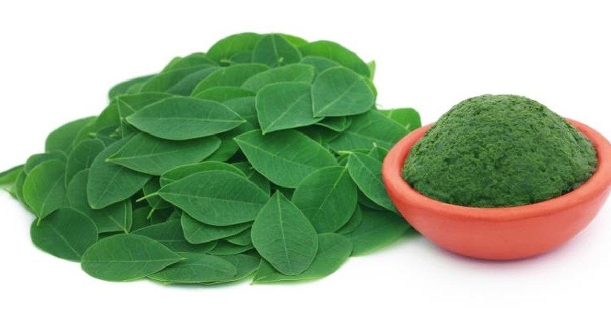 What is Moringa? The New Anti-Inflammatory Superfood